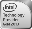 Technology Provider Gold 2013